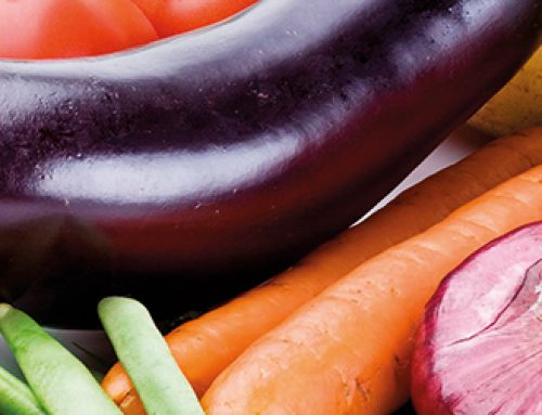 Global Food Safety Initiative Seeks Comments on USDA Application for Technical Equivalence