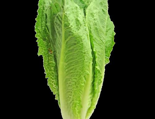CDC drops romaine lettuce advisory
