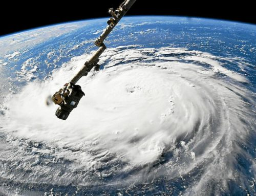North Carolina growers speed harvest in advance of Florence
